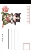 萌宠可爱猫咪2-手绘风格-等边留白明信片(竖款)套装