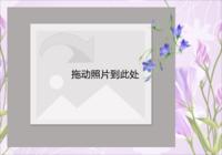 清新-彩边拍立得横款(6张P)