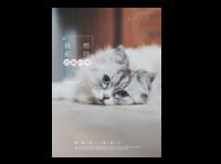 我想和你虚度时光-送女友宠物均可#-A4杂志册(24p) 亮膜