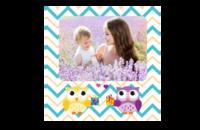 可爱猫头鹰宝宝纪念册-8x8印刷单面水晶照片书