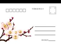 梅花 商务 通用-全景明信片(横款)套装