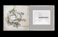 美好记忆remember(唯美紫色 蝴蝶)-贝蒂斯8X8照片书