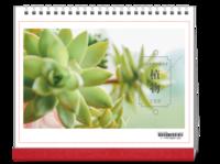 植物#-10寸单面印刷台历