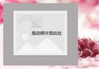 粉色浪漫温馨梦幻-彩边拍立得横款(18张P)