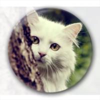 白猫-创意镜子钥匙扣