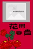 花开富贵-定制lomo卡套装(25张)