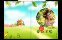 爱的王国(宝宝、家庭、亲子、情侣)-8x12高清银盐照片书
