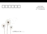 002-等边留白明信片(横款)套装