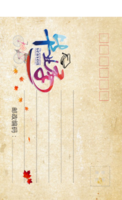 MX65毕业聚会纪念 记录 青春校园 简洁个性-全景明信片(竖款)套装