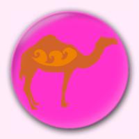 钥匙扣/骆驼