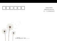 002-正方留白明信片(横款)套装