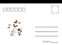 蝴蝶-通用-全景明信片(横款)套装