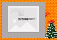圣诞树-彩边拍立得横款(6张P)