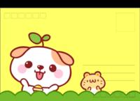 秋田犬-全景明信片(横款)套装