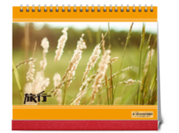 旅行-全家旅行-个人旅行-公司旅行-通用(照片可换10HS台历)-10寸双面印刷台历