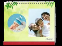 竹报平安幸福宝-10寸单面印刷台历