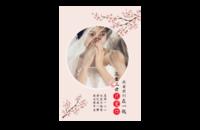 三生三世只爱你-8x12印刷单面水晶照片书20p