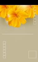 盛开的矢车菊-全景明信片(竖款)套装