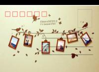 照片墙-正方留白明信片(横款)套装