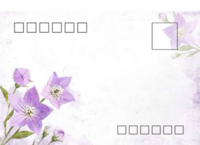 紫色浪漫-等边留白明信片(横款)套装