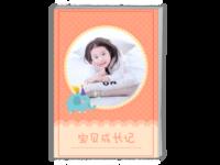 可爱版-宝贝成长记(宝宝写真 宝宝成长影集纪念)-A4时尚杂志册(24p)