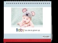 baby宝贝-萌娃-照片可替换-10寸单面跨年台历