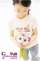 公主日记(图片可换)女宝宝女生专用-36寸竖式海报