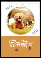 家有萌宠(狗狗天下)-A4环装杂志册26p
