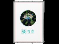 致青春-我的青春语录#-A4时尚杂志册(24p)