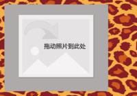个性彩色豹纹(精彩瞬间)-彩边拍立得横款(6张P)