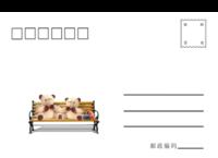 小熊-全景明信片(横款)套装